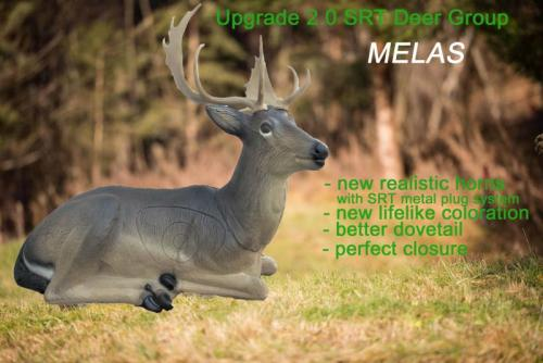 Upgrade 2.0 SRT Fallow Deer Group MELAS